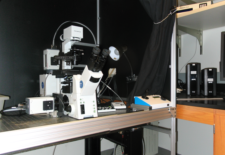 picture of the DSU confocal microscope, click to see a larger version