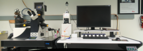 picture of the SP5 confocal microscope, click to see a larger version