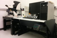picture of the SP5 confocal microscope